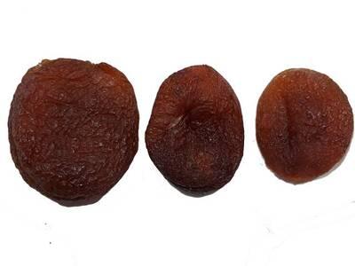 Apricot Sun Dried