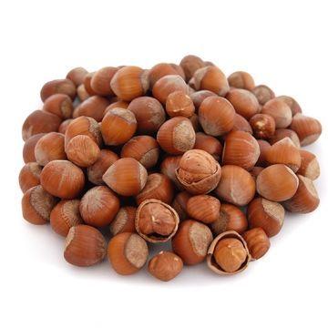 Hazelnut in Shell
