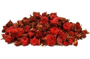 - Pomegranate Flower