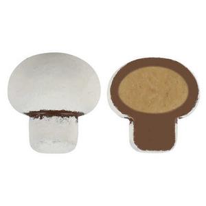 - White Mushroom Chocolate